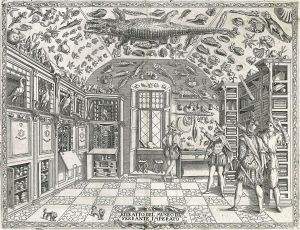 1599 engraving of a curiosity cabinet, Ferranto Imperato