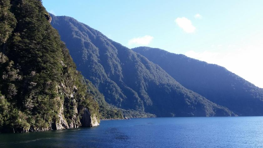 paranormal New Zealand